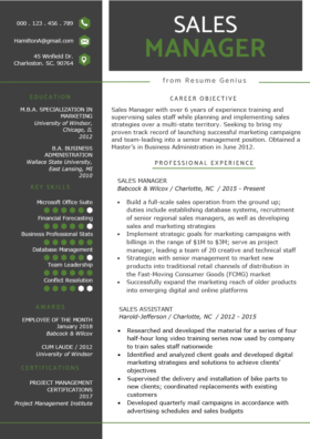 example professional profile one page