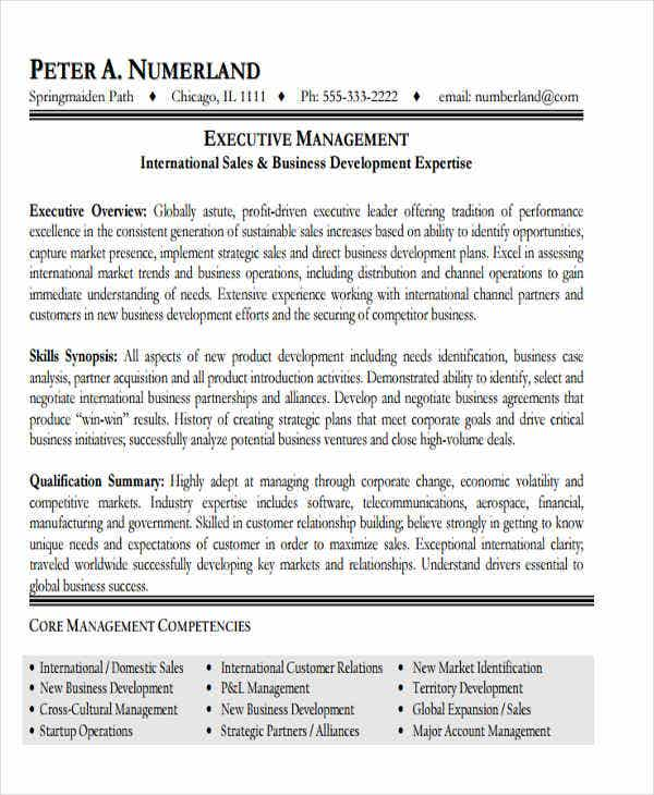 business development executive resume example