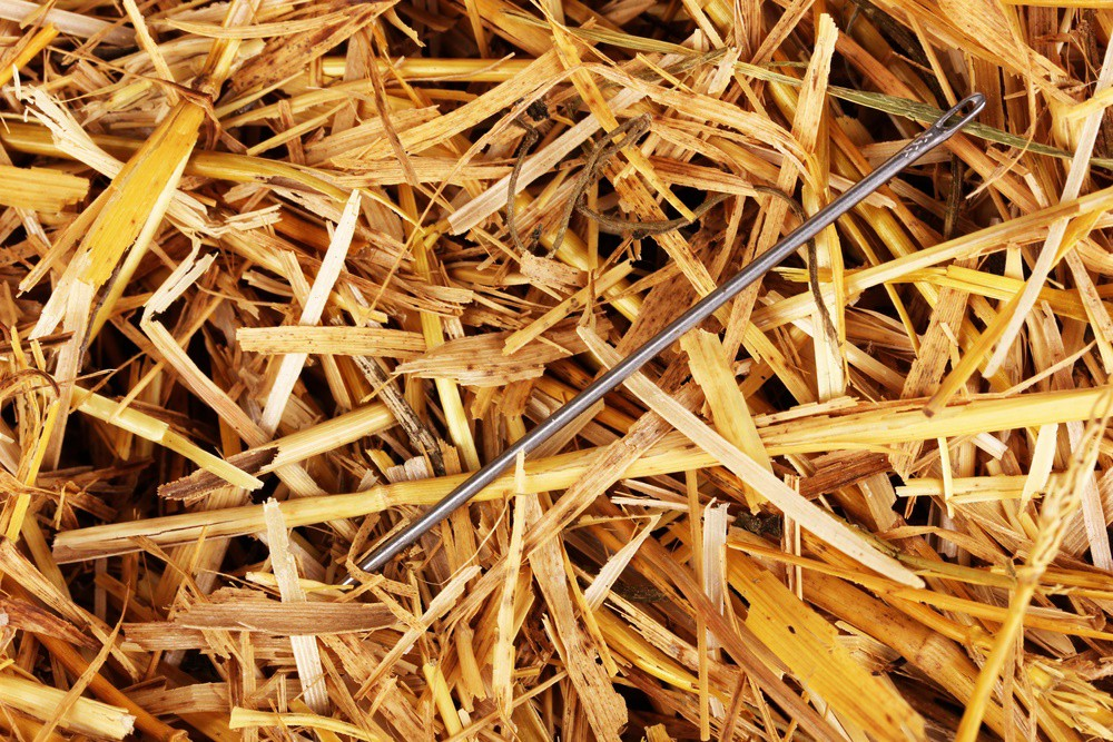 finding a needle in a haystack example