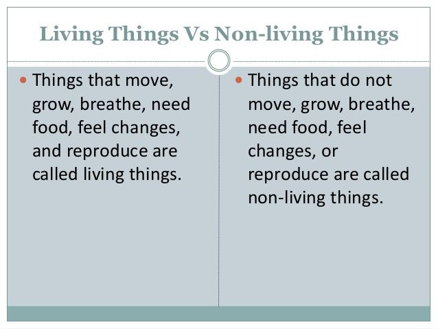 10 example of non living things