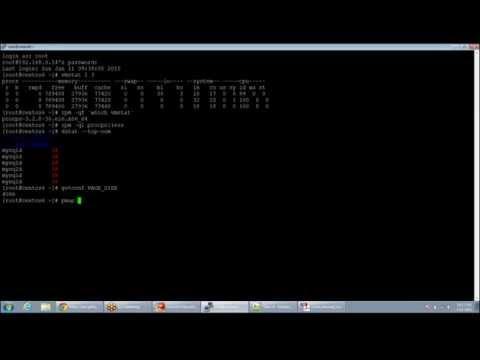 socket programming in c++ linux example
