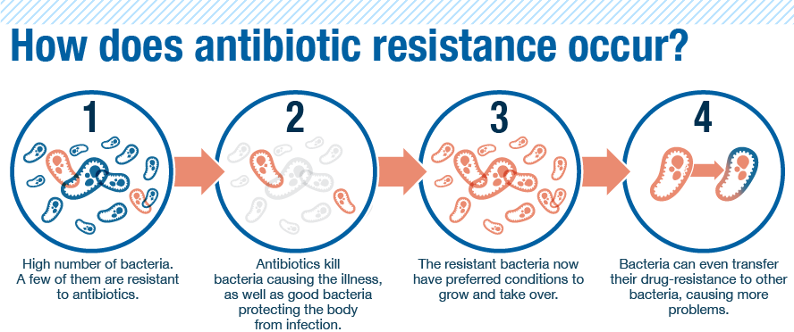 what is an example of bacterial resistance