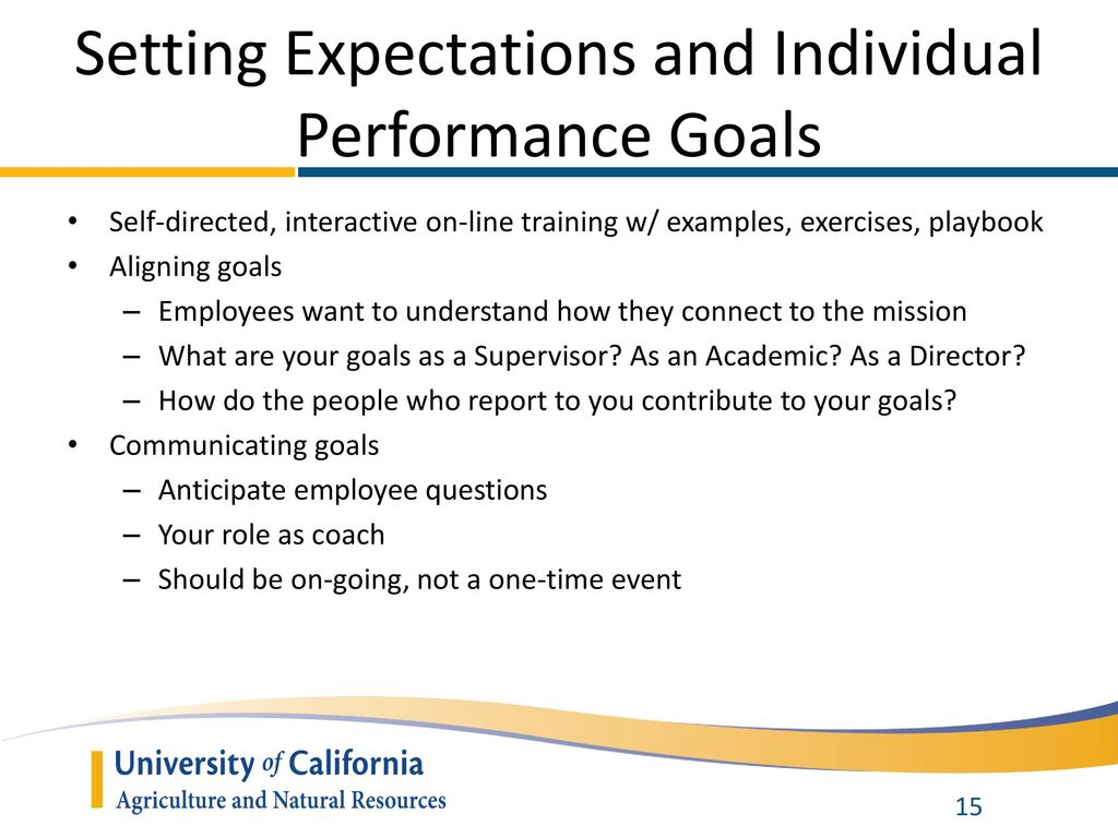 what is a performance goal example