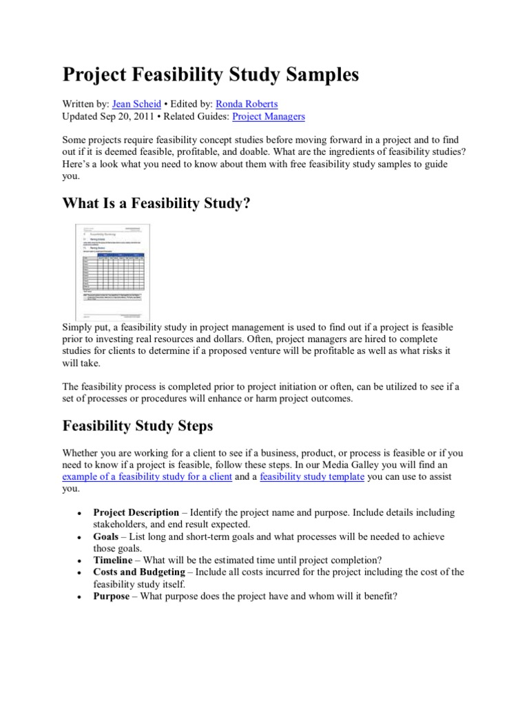 feasibility study in project management example