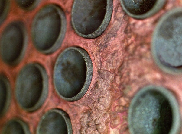 example of copper and iron corrosion