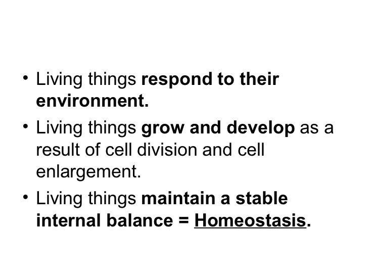 define homeostasis and give an example