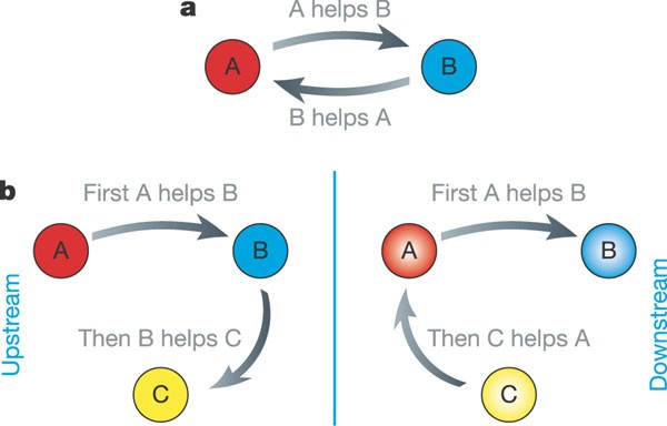 example where effective altruism is applied